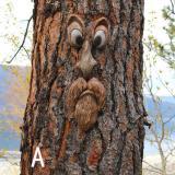TREE FACE DECOR OUTDOOR