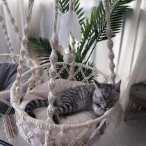 Hanging Cat Bed