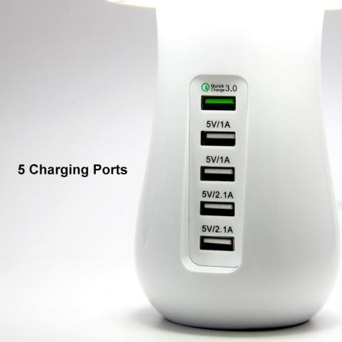 Multi-Port Fast Charging Dock & Lamp