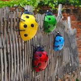 Garden yard decoration beetle