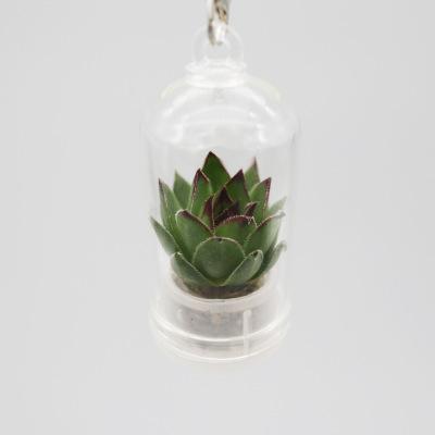 Mini Cactus Keyring