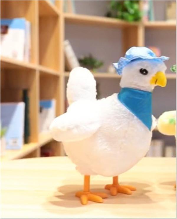 The Magic Chicken