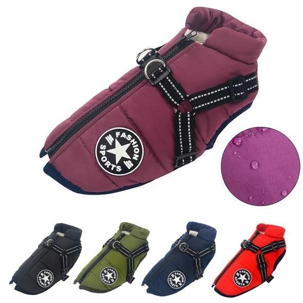 Waterproof Pet Jacket With Harness