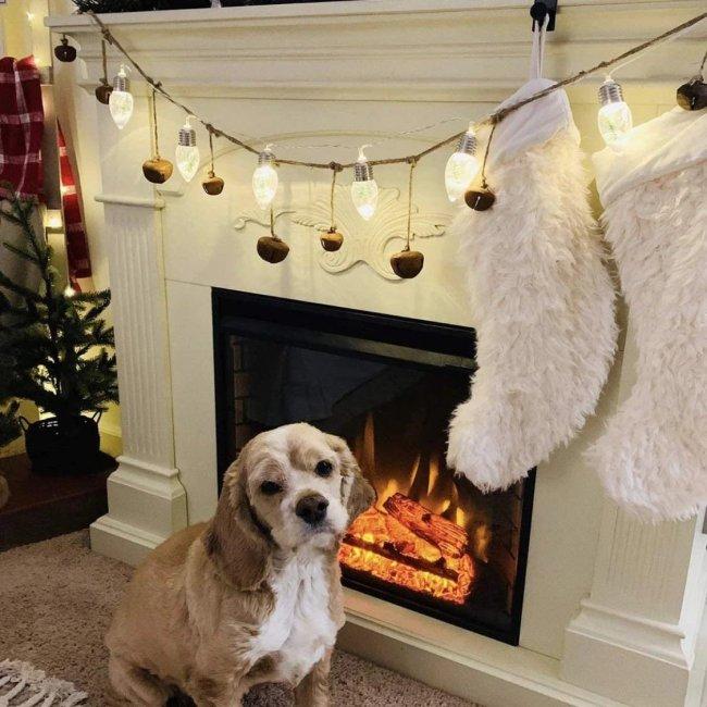 Christmas Tree String Light