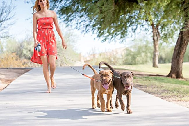 Dual Dogs Retractable Leash
