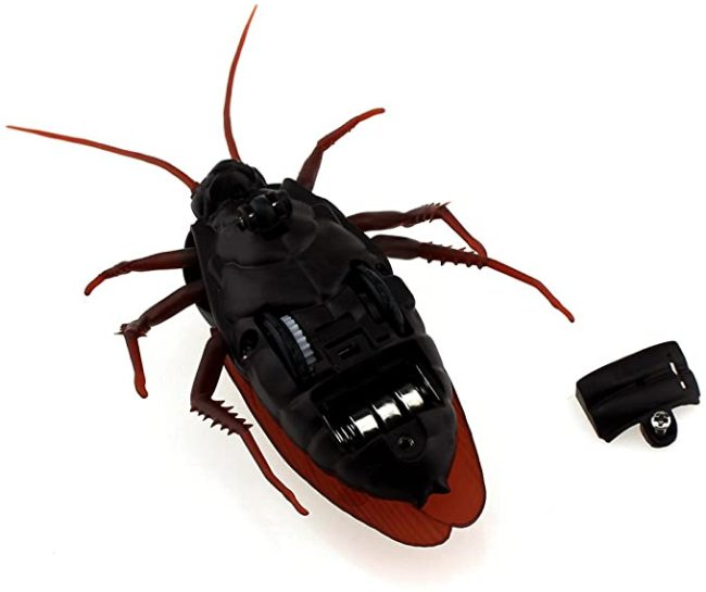 Remote Control Simulation Cockroach