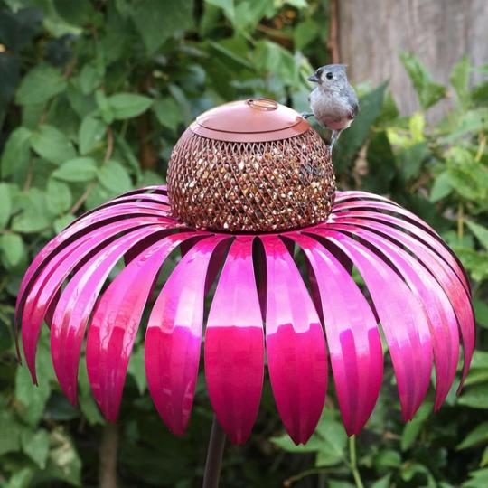 Sensation Pink Coneflower Bird Feeder