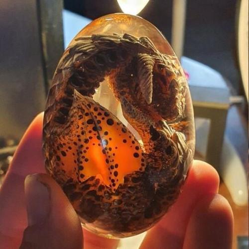 Lava Dragon Egg