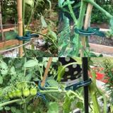 Reusable Garden Flower Lever Loop Gripper Clips - waterproof and non-rusting