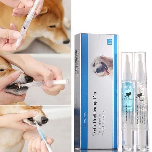 Pet's Teeth Health By Repairing and Preventing Disease