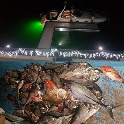 Deep Drop Fishing Light