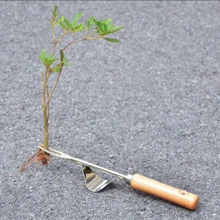 Garden Hand Weeder Tool