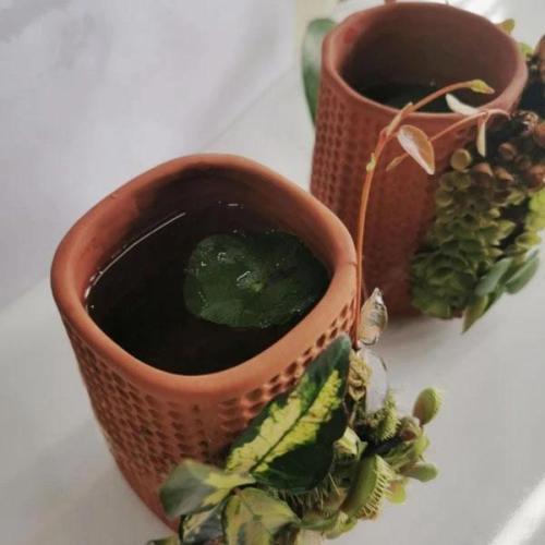 Self-watering Planter Ceramic Flowerpots