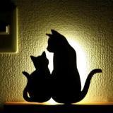 3D PATTERN SOUND CONTROL PROJECTION LAMP