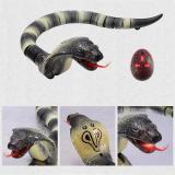 RC Snake