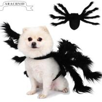 Halloween Spider Costume for Pet