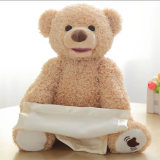 Peek a Boo Plush Bear