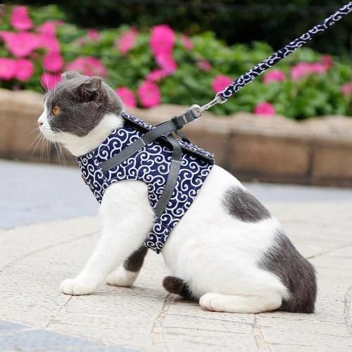 🔥Hot sale🔥-Cat Vest Harness And Leash Set To Outdoor Walking🐱