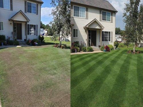 GREEN GRASS & PEST CONTROL LAWN SPRAY