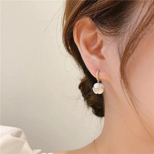 Exquisite Diamond Earrings