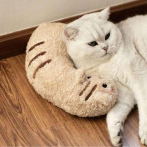 Cat Lovely Cozy Pillow