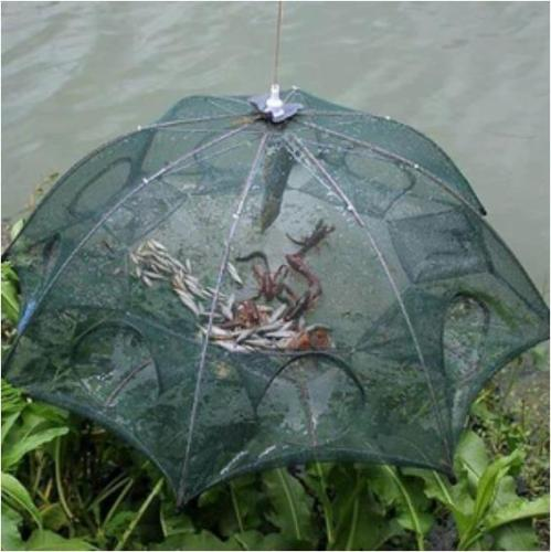 Collapsible Catching Fish Trap