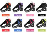 Best Dog Harness That Prevent Dogs From Pulling-Easy on, Easy off