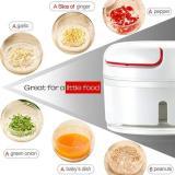 Mini Electric Food Chopper