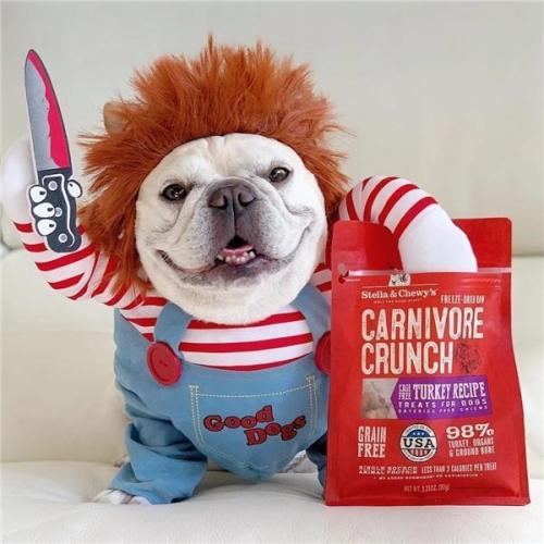 🔥2020 NEWEST🔥 DEADLY DOLL CHUCKY DOG & CAT PET COSTUME