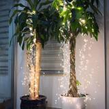 Waterproof Firefly Lights
