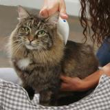 Flea Comb - Electric for Dogs and Cats