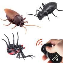 Remote Control Simulation Cockroach