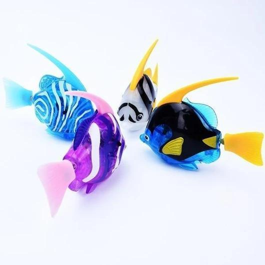 Swimming Fish for Cats