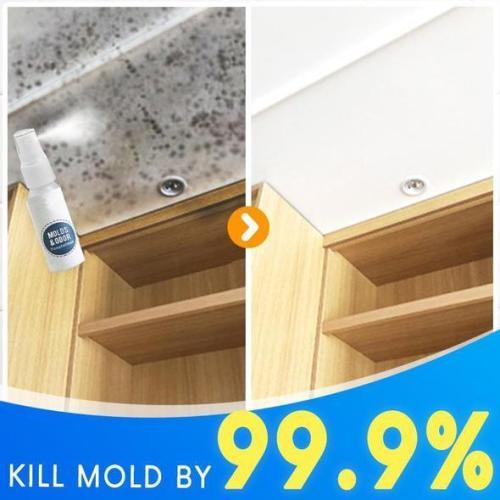 Moldoff Mildew Removal Spray
