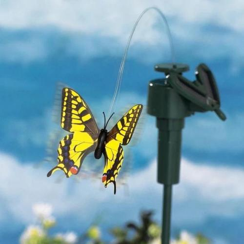 Solar Dancing Hummingbird &Butterfly