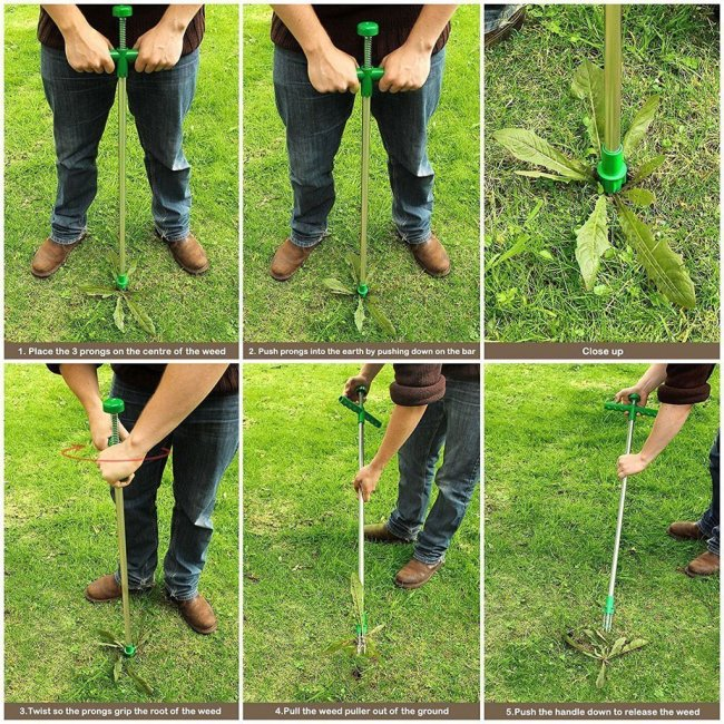 Stand Up Weed Puller-grab the roots and it doesn't grow back