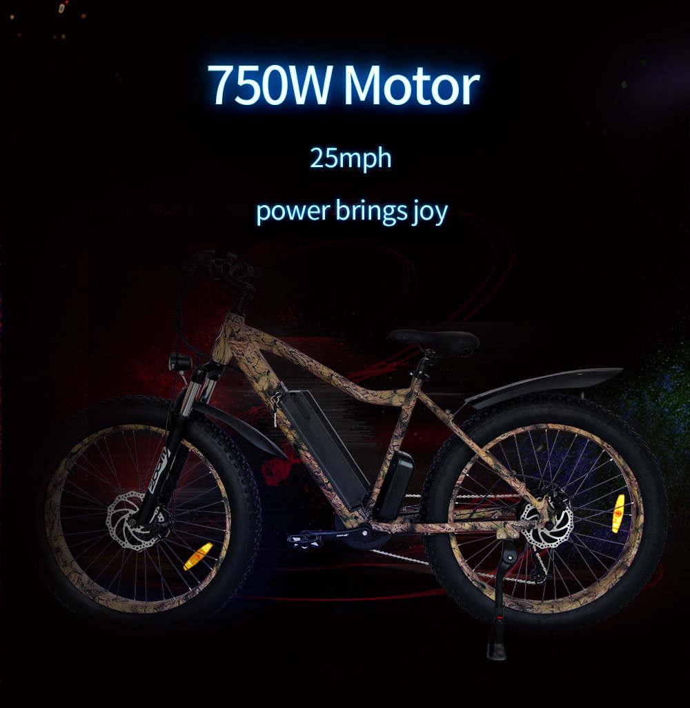 750w Fat Tire Electric Bike