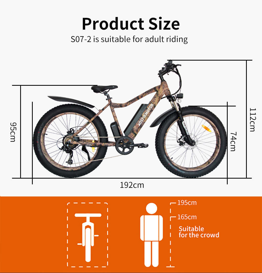 750w Fat Tire Electric Bike