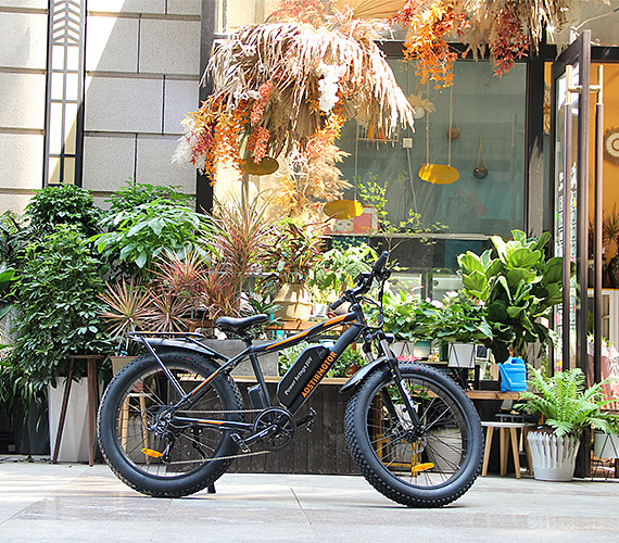 Healthy electric bikes