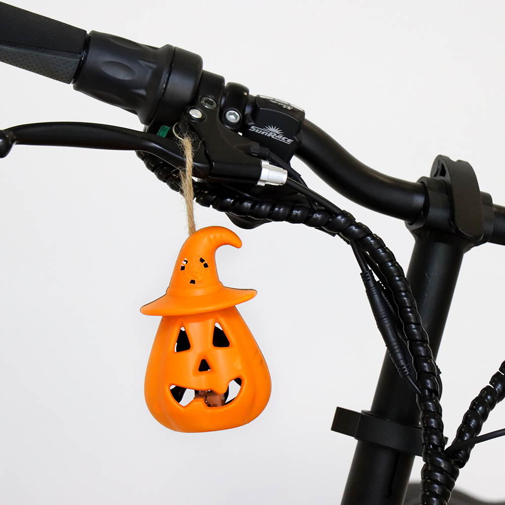 Limited Halloween Gift