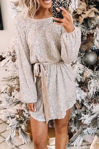 Dokifans Christmas Day Sequin Silver Dress