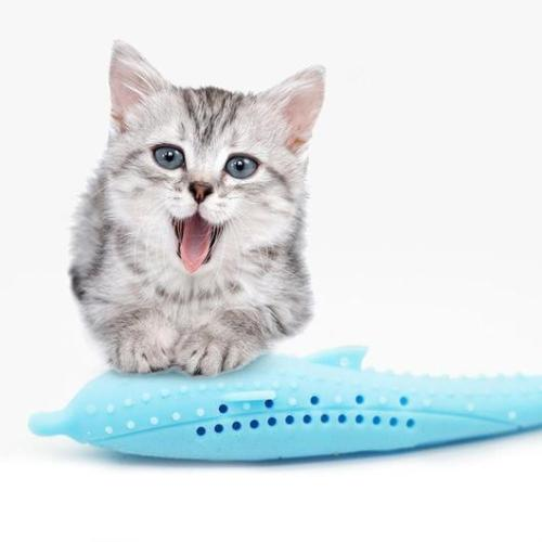 Interactive Cat Toothbrush
