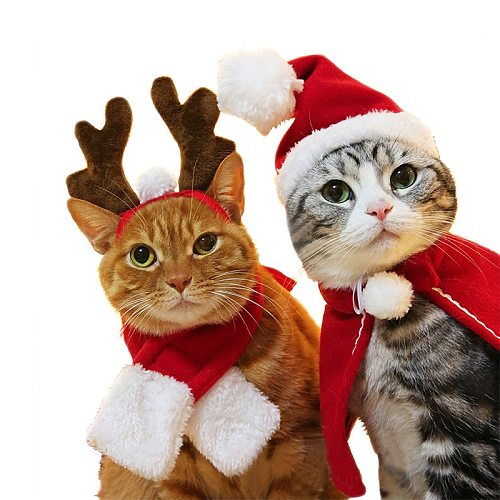Christmas Dress for Dogs or Cats Pet Supplies Cat Pineapple Dog Headgear Navidad Photo Props for Puppy Small Dogs Accessories