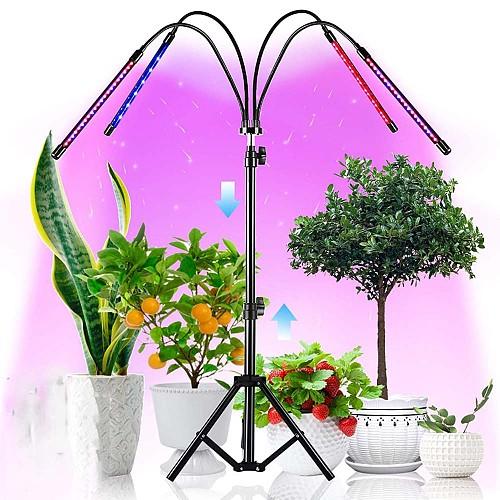 Phyto Lamp Timer Full Spectrum USB Grow Light Lamp For Plants Full Spactrum Lights For Plants Garden Flowers Herbs Grow Box