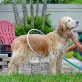 360 Degrees Dog Shower Pet Showe