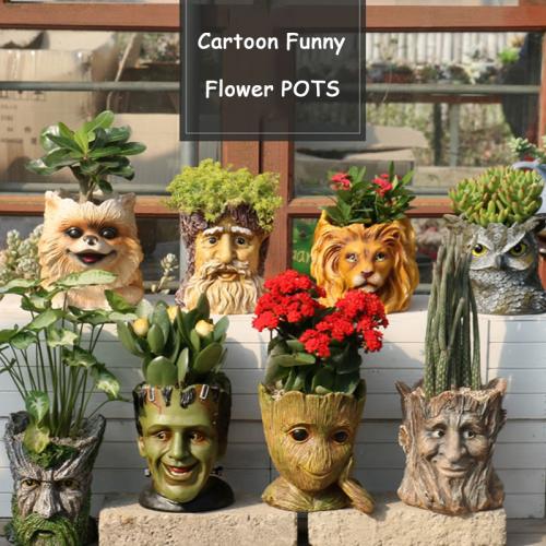Cartoon Design Garden Succulent Bonsai Pots