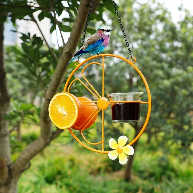 Forup Oriole Outdoor Jelly and Oranges Bird Feeder for Jelly and Oranges and Jam for Birds