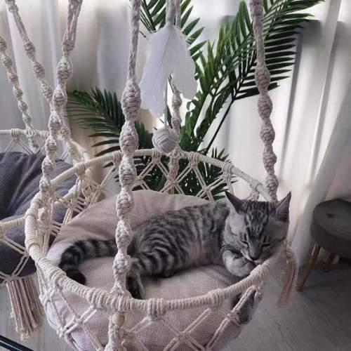 2021 Macrame Cat Swing Hammock