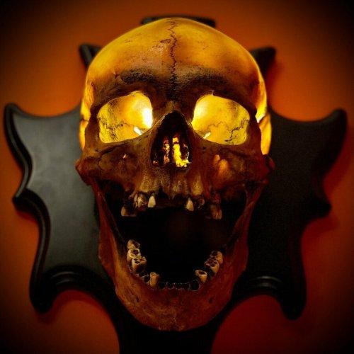 """Skull Lamp""""Singing Head""""Night Light Wall Decoration"""