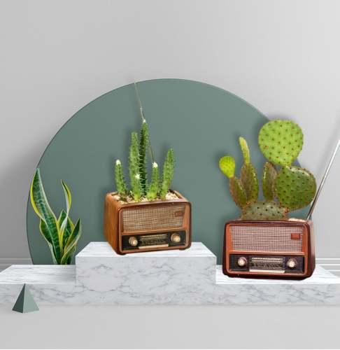 Lovely Tv Radio Succulent Planter Plant Pots Mini Planter Cache Pot De Fleur
